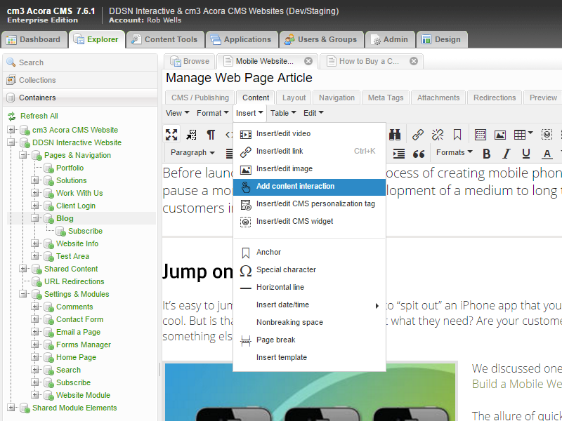 A cropped screenshot of part of the cm3 Acora CMS page development toolkit.
