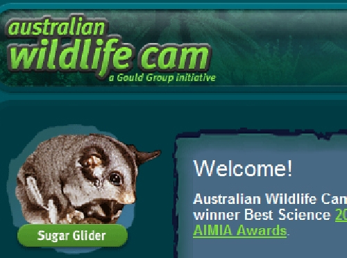 Screenshot ofAustralian Wildlife Cams